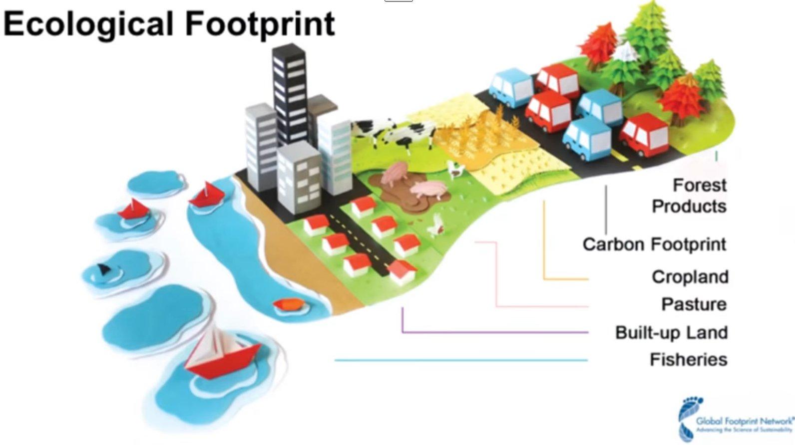Nature S Footprint